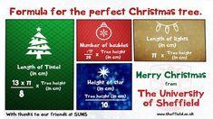 Wenn Mathematiker einen Weihnachtsbaum planen
