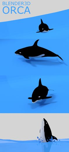 #Orca / #KillerWhale created using #blender3d   https://youtu.be/GROWxT3glgg