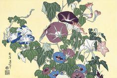 Katushika Hokusai / 葛飾北斎 北斎花鳥画集6 朝顔に雨蛙