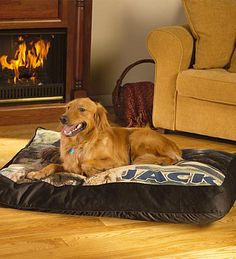unique dog beds | Home : Personalized Dog Bed