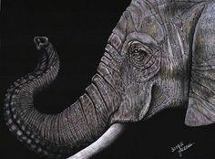 Elephant 1 By Joanna Karocka