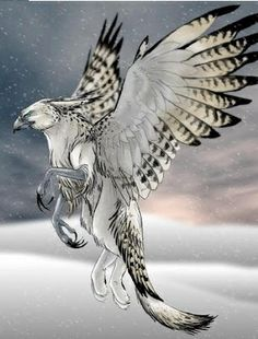 The Griffin is a legendary creature with the head, beak and wings of an eagle, the body of a lion an Mythical Creatures Art, Mythological Creatures, Magical Creatures, Pet Anime, Fantasy Beasts, Legendary Creature, Fantasy Artwork, Creature Design, Fantasy World