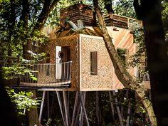 luxury treehouse 2