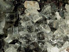 Caracolite. Lolon Mine (Challacollo Mine), Challacollo, Iquique, I. Region, Chile Taille=1.3 mm Copyright: Enrico Bonacina
