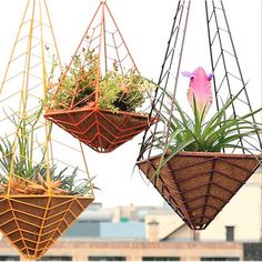 Hanging planters, Planters and Los angeles on Pinterest