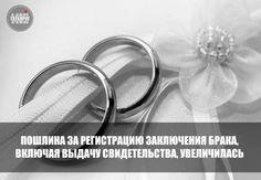 Жениться в России стало дороже