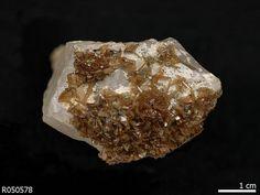 Zanazziite. Lavra da Ilha pegmatite, Taquaral, Minas Gerais, Brazil Source: University of Arizona Mineral Museum 16166