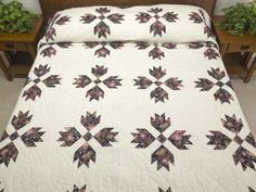 Bears Paw Quilt -- splendid meticulously made Amish Quilts from Lancaster (hs6297)