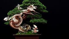 One of four winning trees at the Bonsai San Show: Juniperus Sabina by Francesç Vilaret #bonsai