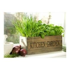 13 best herb garden in kitchen images decorating kitchen diy rh pinterest com