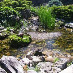 Rock garden at Oshawa Valley Botanical Garden. Garden Water, Shrubs, Ontario, Fountain, Grass, Waterfall, Rocks, Lovers, Gardening
