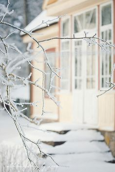 Winter Time BY LORETA | Flickr - Photo Sharing!