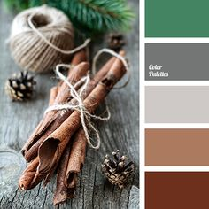 Color Palette #1166