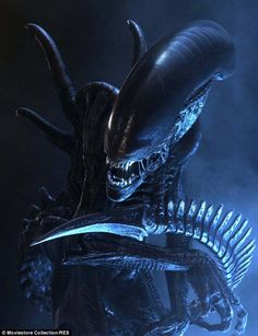 The alien was used in a series of spin-off films, including this, from Alien Vs Predator...