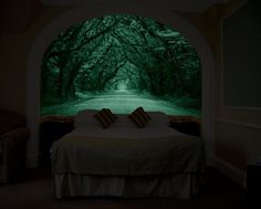 Glow In The Dark Wall Mural That Makes It Look Like You Have a Window