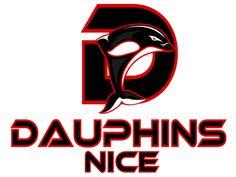 1999, Nice Dauphins (Nice, Alpes-Maritimes) Stade des Arboras #NiceDauphins #Nice #LEFA #France (L6624)