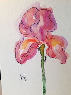 Single Iris Watercolor Card- by gardenblooms on Etsy