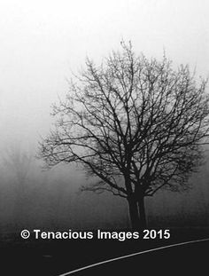 Check out this item in my Etsy shop https://www.etsy.com/listing/485603494/abstract-artblack-white-photographyfoggy