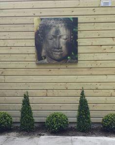 Tuin inrichten met buxus en boeddha.