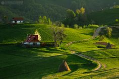Adrian Petrisor - Photography: Romania reborn - part I