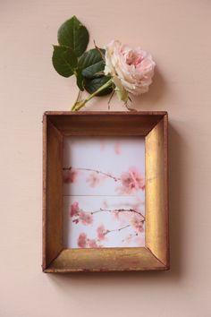 #spring #printemps #rose #lavieenrose #rosenude #flowerslovers #floralpostcards #cartespostalesfleuries #cartes #cartespostales #carolinesweetmemories #carolinesweetmemoriesflowers Nude Color, Notebooks, Postcards, Spring, Frame, Decor, Hydrangeas, Coral Peonies, Pink Peonies