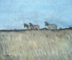 Zebra - Oil on Board by Vincent Kennard