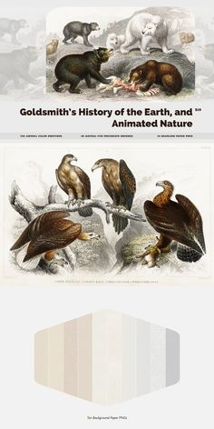 Goldsmith's History of the Earth and Animated Nature Procreate Brushes, Color Swatches & Seamless Papers are specially designed for Animal Drawing. Acrylic Brushes, Watercolor Brushes, Font Maker, Animal Fur, Wet Brush, Dry Brushing, Photoshop Brushes, Color Swatches, Animal Drawings