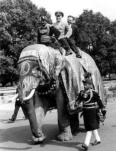 Жуков на слоне