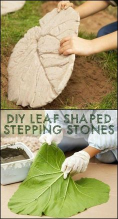 Make your own unique leaf-shaped stepping stones!