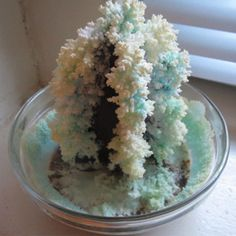 Weekend Project: Make Your Own Salt Crystal Tree - Grandparents.com