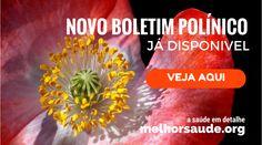 NOVO BOLETIM POLÍNICO melhorsaude.org melhor blog de saúde