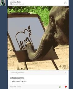 In the gif the elephant was really painting this elephant. Significance should not be judged by brain size.