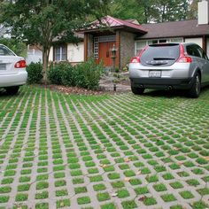 Set your driveway apart, give your home curb appeal and help the environment all at once with our Turnstone Environment Pavers. Permeable Driveway, Driveway Landscaping, Country Landscaping, Driveways, Walkways, Diy Driveway, Driveway Ideas, Florida Landscaping, Landscaping Design