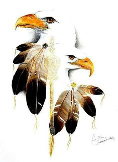 Native American Art I love eagles, especially the bald eagle… Native American Pictures, Native American Artwork, Native American Quotes, American Indian Art, Native American History, Native American Indians, Native American Drawing, American Symbols, American Women