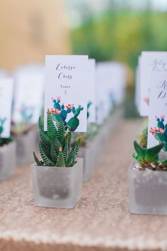Cactus favor for your Blush desert cactus ranch wedding ceremony quick and inexpensive wedding mementos and style celebration favors on a spending budget Wedding Favors And Gifts, Wedding Favor Table, Creative Wedding Favors, Inexpensive Wedding Favors, Elegant Wedding Favors, Wedding Centerpieces, Wedding Ceremony, Wedding Ideas, Wedding Venues