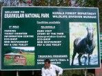 Day Tour to Eravikulam National Park Munnar / Kerala