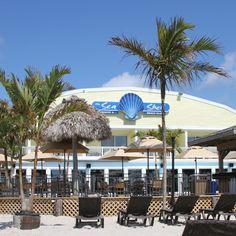 The Sea Shell Resort and Beach Club - Long Beach Island's Premier Oceanfront Resort - Beach Haven, Long Beach Island NJ