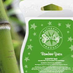 Bamboo Yuzu Scentsy Bar.  Imagine a Japanese garden as you breathe in dewy bamboo, tranquil lotus flower, and fresh yuzu with hints of sage. #bamboo