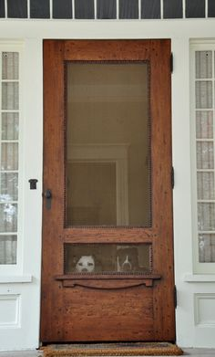 screen door... dogs.   : )  (i want this screen door for our house.)