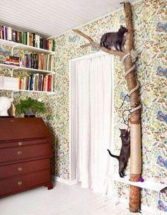 como-hacer-un-arbol-rascador-para-gatos