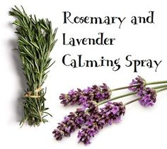 water  -20 drops rosemary essential oil  -20 drops lavender essential oil    Directions: Combine all ingredients in a 2 ounce mister/spray bottle. Spray whenever necessary for calming effect. Shelf stable, no need to refrigerate, and will last indefinitely.