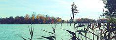 https://flic.kr/p/Aesgoy | Luigi Speranza -- Davenport's Eastwood Farms, The Connecticut Shore, New England, LONG ISLAND SOUND.