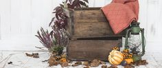 Nothing makes seasonal decorating easier than vintage wooden crates. In fact, decorating in general is easy with vintage crates. They make excellent storage, Vintage Wooden Crates, Vibrant Colors, Colours, Shabby Chic Style, Uk Fashion, Seasonal Decor, Reusable Tote Bags, Indoor, Blog