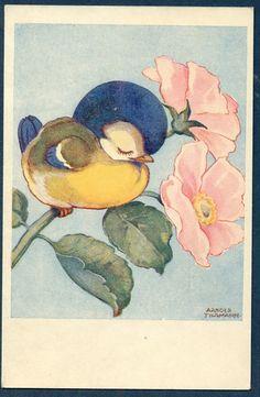 Arthur Tilgmann postcard | eBay