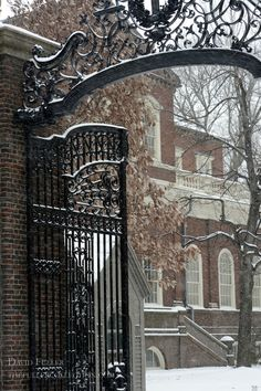Harvard University / David Fuller Photo