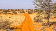 jf_rondreisnamibie Country Roads, Blog, Africa