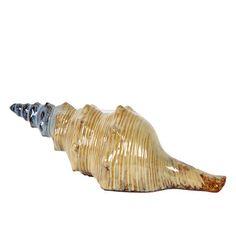 Urban Trends Ceramic Sea Shell Statue