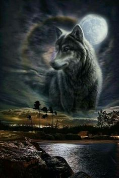 28 Best native art images in 2019 | Wolf pictures, Wolf