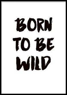 Affisch med text born to be wild i svartvitt