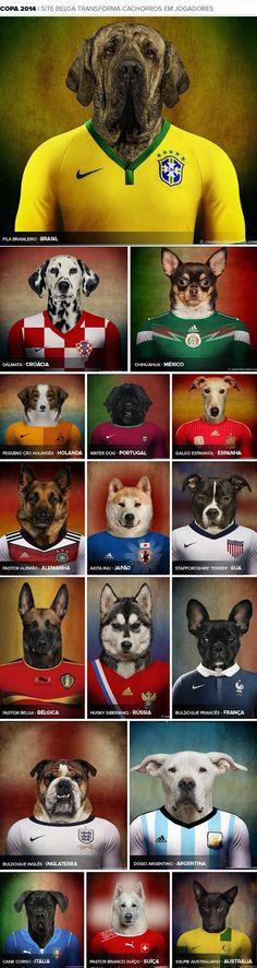 Equipe de foot de chiens Pays origines des chiens